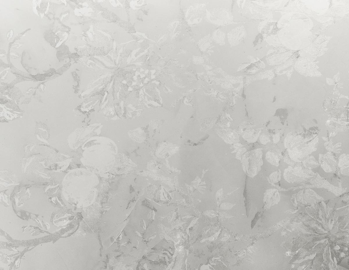 Golden Garden White Frost